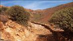 Fuerteventura - Tag 8 - Degollada de los Granadillos