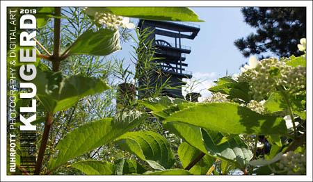 Ruhrpott | Ein Sommerblick zum Malakoffturm