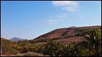 Fuerteventura - Fotos der Woche - Die Karawane von La Lajita
