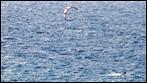 Fuerteventura - Fotos der Woche - Kite-Surfer an Playa de la Cebada