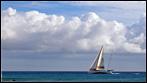 Fuerteventura - Fotos der Woche - Maxi in Fahrt