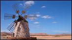 Fuerteventura - Fotos der Woche - Molino de Tefia