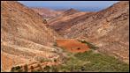 Fuerteventura - Fotos der Woche - (Stausee) Embalse de las Peñitas