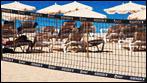 Fuerteventura - Fotos der Woche - Robinson Club :: Jandia
