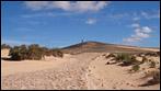 Fuerteventura - Fotos der Woche -Die Wüste - El Jable