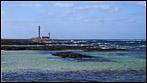 Fuerteventura - Fotos der Woche | Faro de Tostón :: El Cotillo