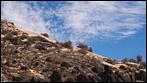 Fuerteventura - Fotos der Woche   Boca de Mal Nombre