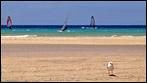Fuerteventura - Fotos der Woche | Promenade :: Risco del Paso