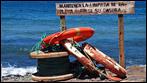 Fuerteventura - Fotos der Woche | Los Molinos