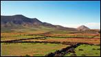 Fuerteventura - Fotos der Woche | La Oliva