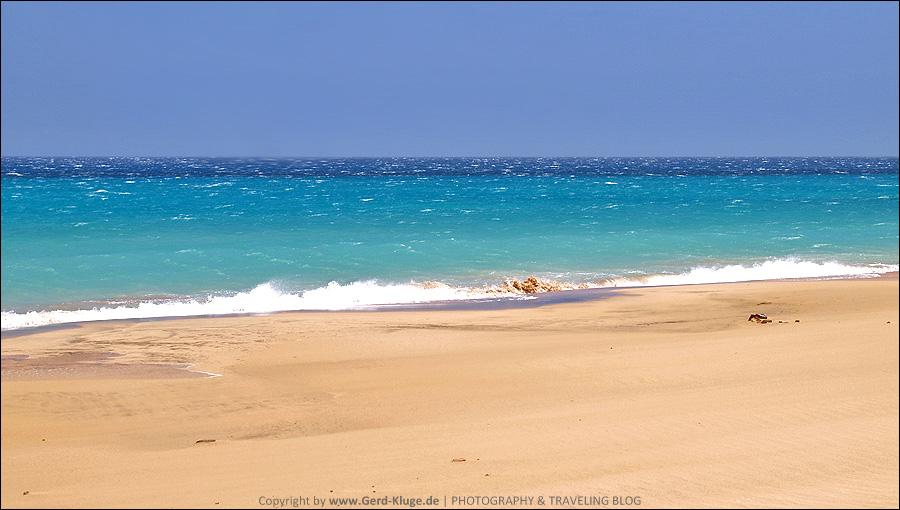 Fuerteventura :: Tag 11 | Ostkanareneidechsen nerven