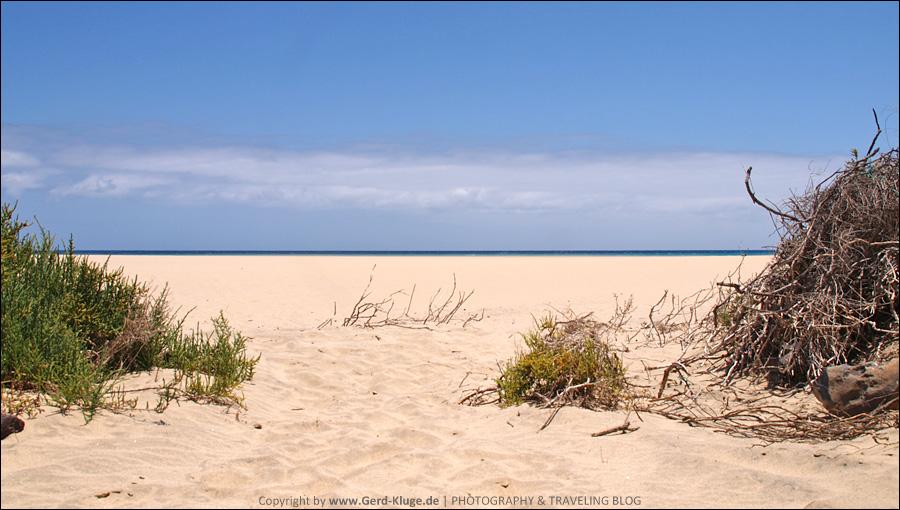 Fuerteventura :: Tag 14 | Immer wieder Sonntags