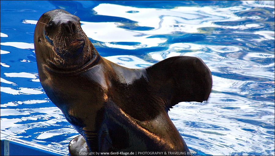 Fuerteventura :: Tag 9 | Ein Besuch im Zoo