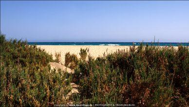 Fuerteventura :: Tag 15 | Na bitte, geht doch