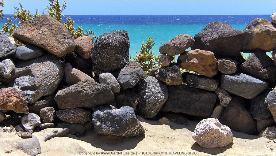 Fuerteventura :: Tag 14   Dinosaurier unter uns