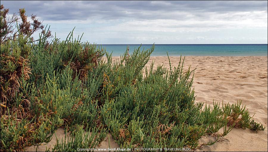 Fuerteventura :: Tag 5 | Testfahrt über Berge und Täler