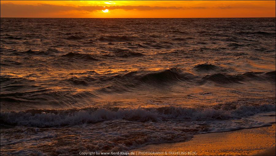 Vorausblick 2009 | Playa de la Cebada