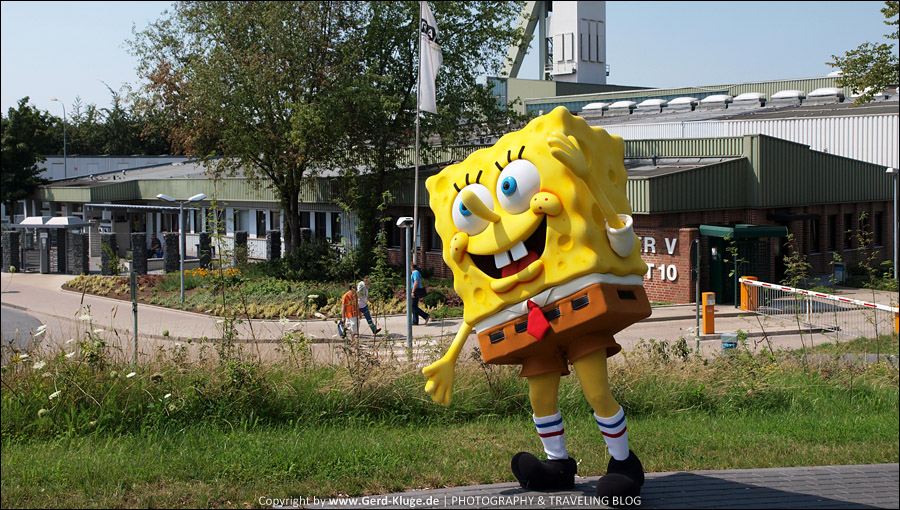 Fotoshooting mit SpongeBob