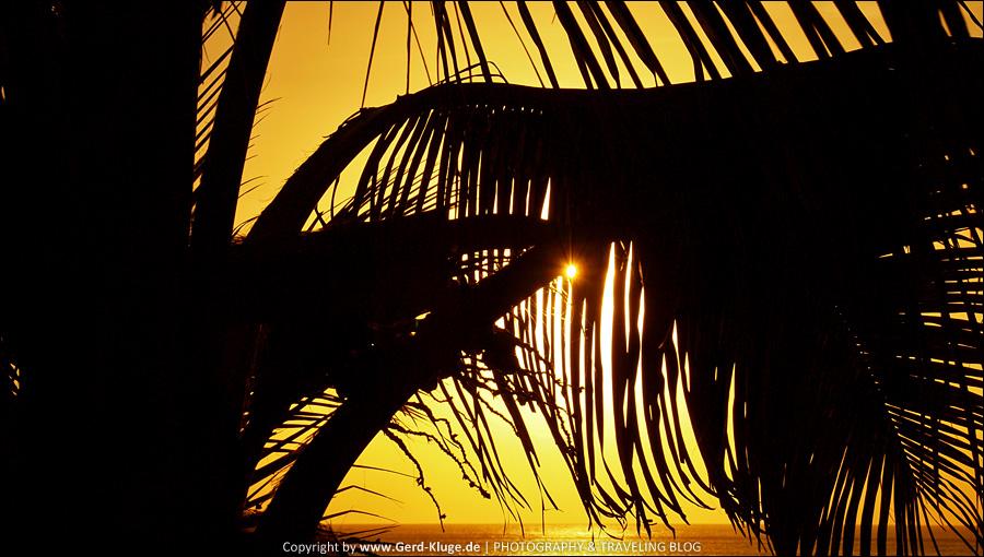 Palmenblick    Morro Jable - Playa de la Cebada