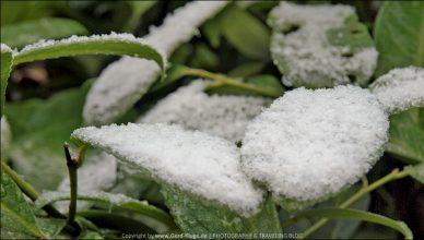 Erster Schnee im Ruhrgebiet