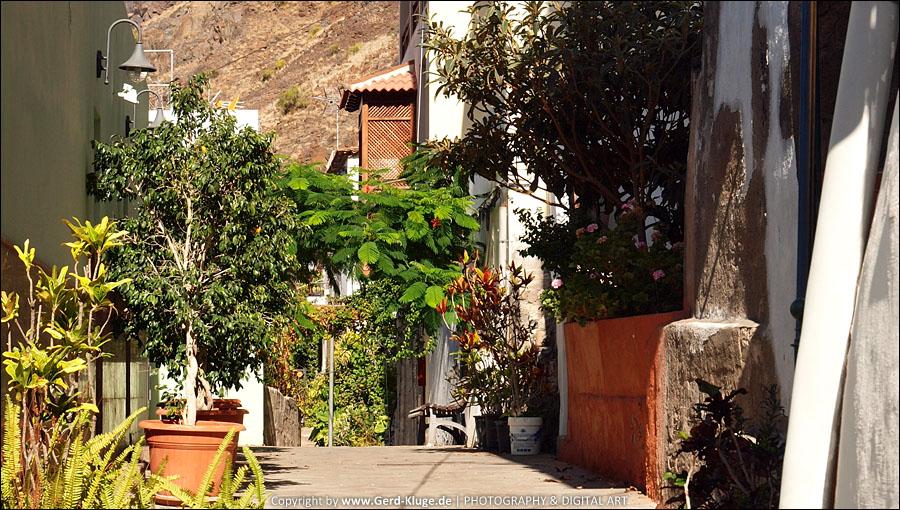 La Gomera :: Tag 2 | Valle Gran Rey entdecken