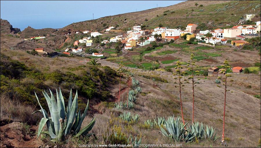 La Gomera :: Tag 12 | Von den Terrassenkulturen in den Nebelwald