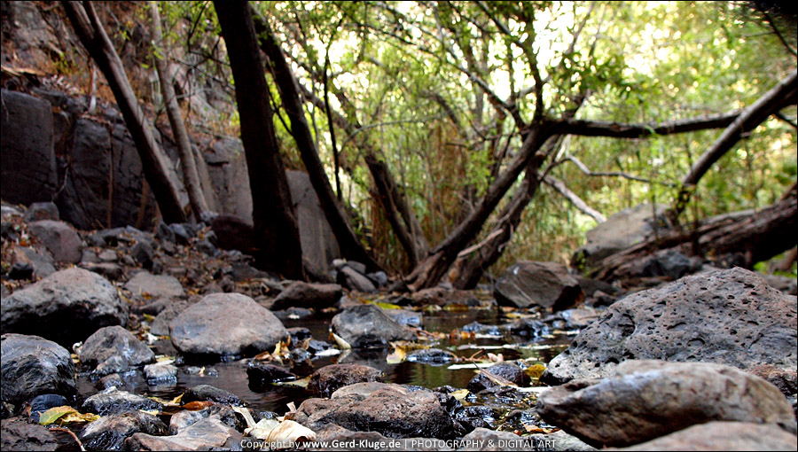 La Gomera :: Tag 14 | Zum Wasserfall bei El Guro