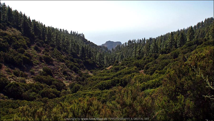 La Gomera :: Tag 20 | Von Pajarito nach Ajugal