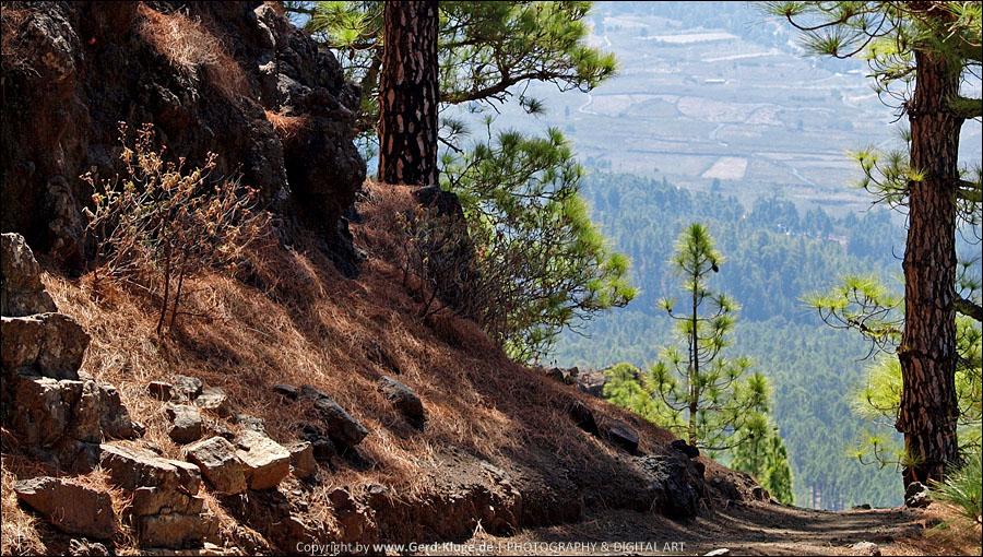 La Palma :: Tag 5 | Caldera de Taburiente
