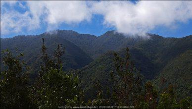 La Palma :: Tag 8 | Cubo de la Galga