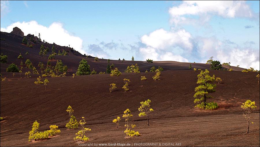 La Palma :: Tag 17 | Die Lavasandhochfläche von Llano del Jable