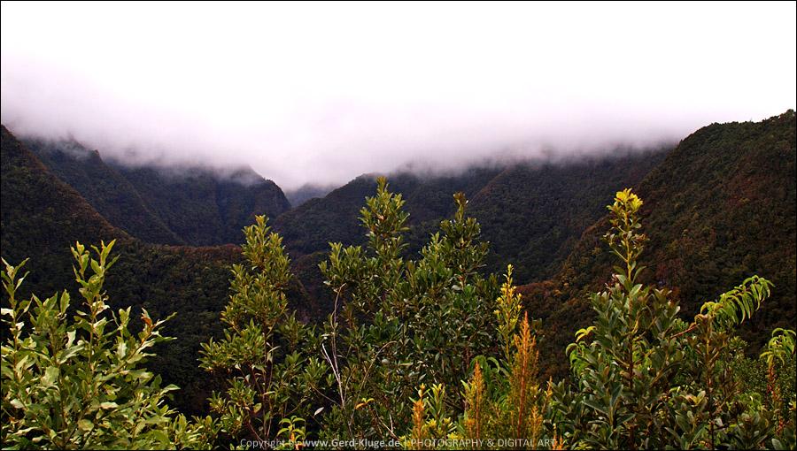 La Palma :: Tag 12 | Die Aussicht am Las Barandas
