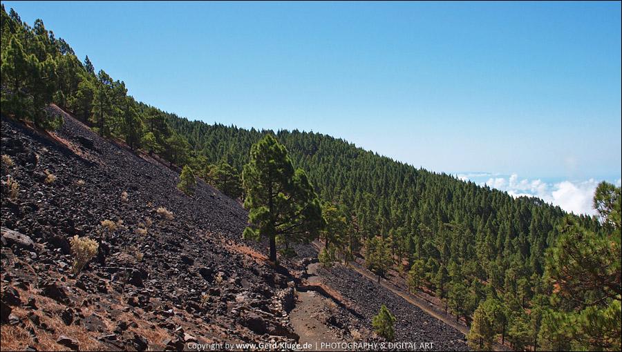 La Palma :: Tag 13 | Wanderweg der Cumbre Vieja