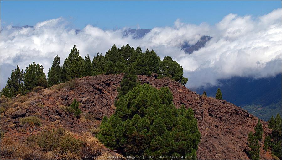 La Palma :: Tag 13 | Atemberaubende Ausblicke vom Pico Birigoyo