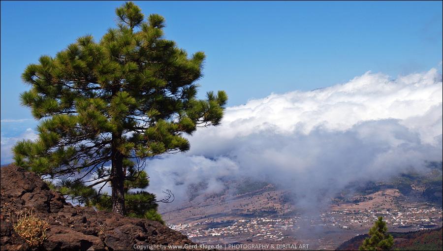 La Palma :: Tag 13 | Blick auf El Paso