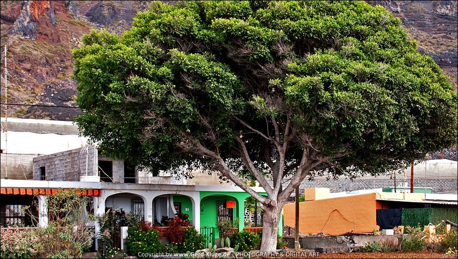La Palma :: Tag 16 | El Remo