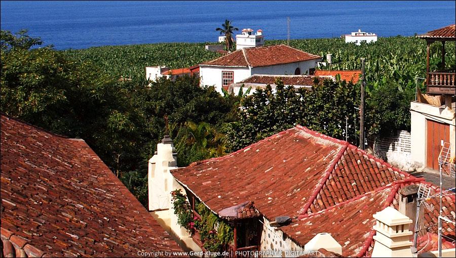 La Palma :: Tag 24 | Tazacorte - Bananenplantagen