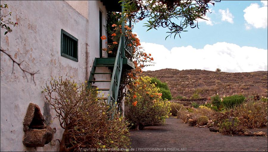 Lanzarote :: Tag 13   Tiagua - Villa Agricola El Patio