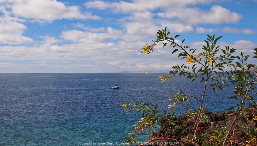 Lanzarote :: Tag 16 | Puerto Calero - Weitblick