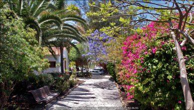 Fuerteventura :: Tag 5 | Bummel durch Pájara