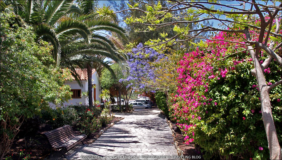 Fuerteventura :: Tag 5 | Bummeln durch Pájara