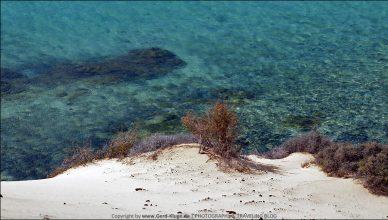 Fuerteventura :: Tag 18 | Ein Platz am Meer