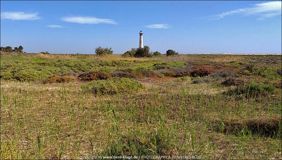 Die grüne Ampel für Fuerteventura ist zurück | El Saladar de Jandia